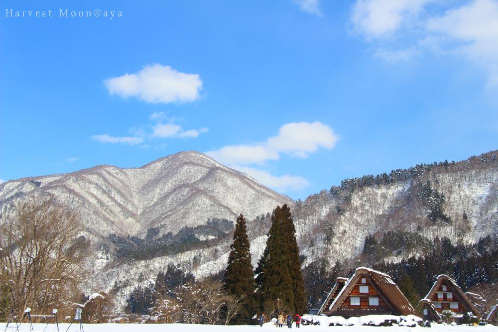 Winter world No.1_b0208495_22581346.jpg