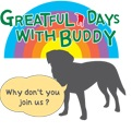 GREATFULDAYSWITHBUDDY