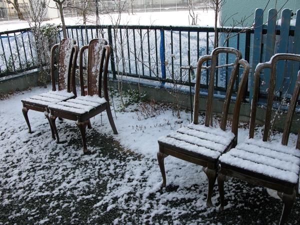 初雪_f0129726_21504379.jpg