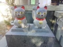 浅草_e0085133_0592690.jpg