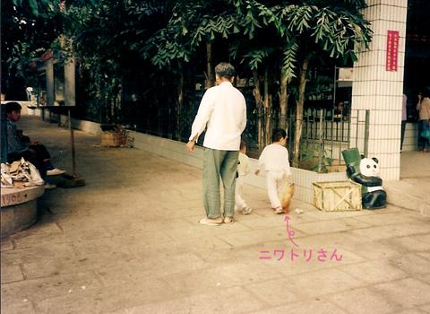 旅シリーズ② 中国・深圳(シンセン)_d0156336_17251282.jpg
