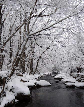 本日「大寒」、「大寒の龍泉洞の水」限定販売します。_b0206037_10193732.jpg