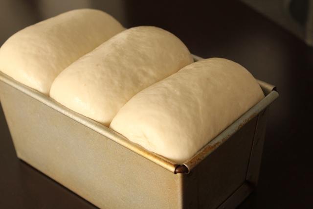 パン教室で「レーズン酵母の食パン」を習いました!_a0165538_928456.jpg