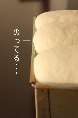 パン教室で「レーズン酵母の食パン」を習いました!_a0165538_9303112.jpg