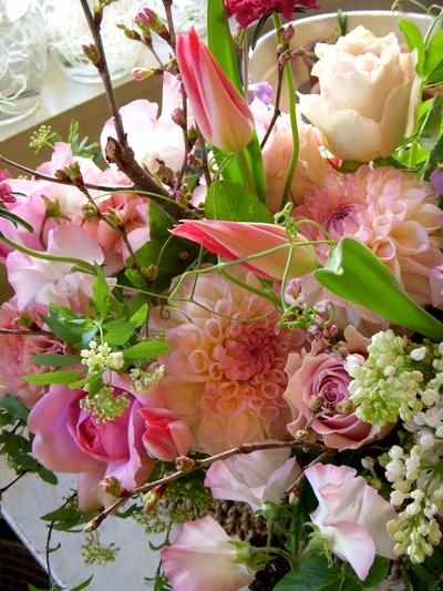 春いっぱいで。。。_a0229658_1746766.jpg