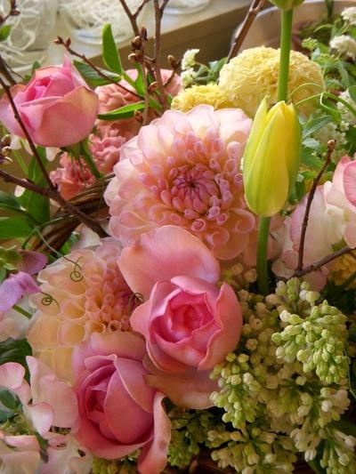 春いっぱいで。。。_a0229658_1814428.jpg