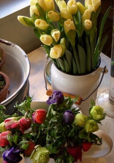 春いっぱいで。。。_a0229658_18441910.jpg