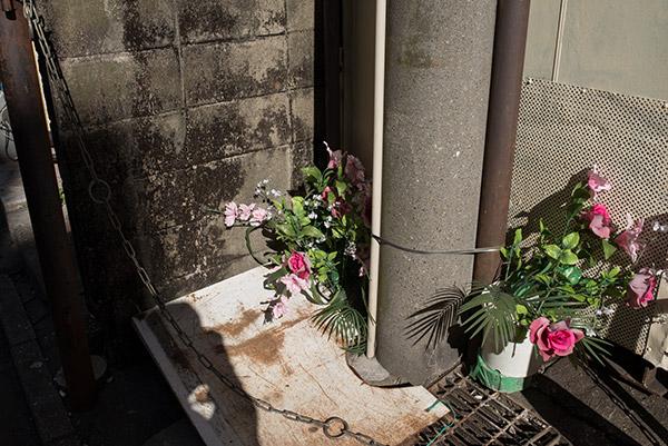 2014/01/20 蕨駅から実家まで_b0171364_9361911.jpg