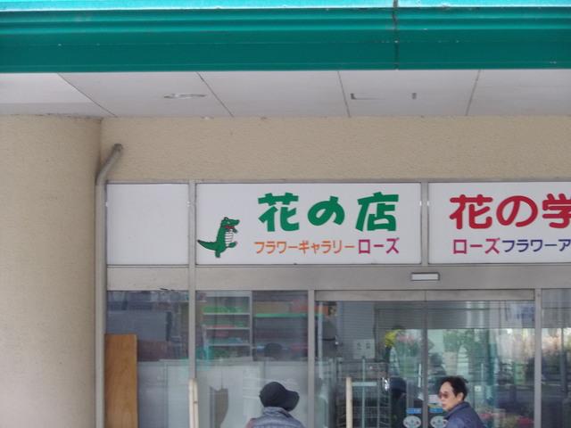 関西あの駅わに駅_c0001670_21453312.jpg