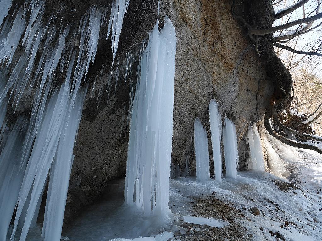 1月19日、七条大滝_f0138096_17543295.jpg