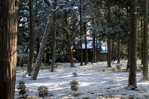 大徳寺参道から 14雪げしき2_e0048413_925161.jpg