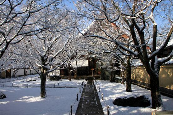 大徳寺参道から 14雪げしき2_e0048413_9253115.jpg