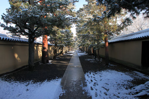 大徳寺参道から 14雪げしき2_e0048413_925527.jpg