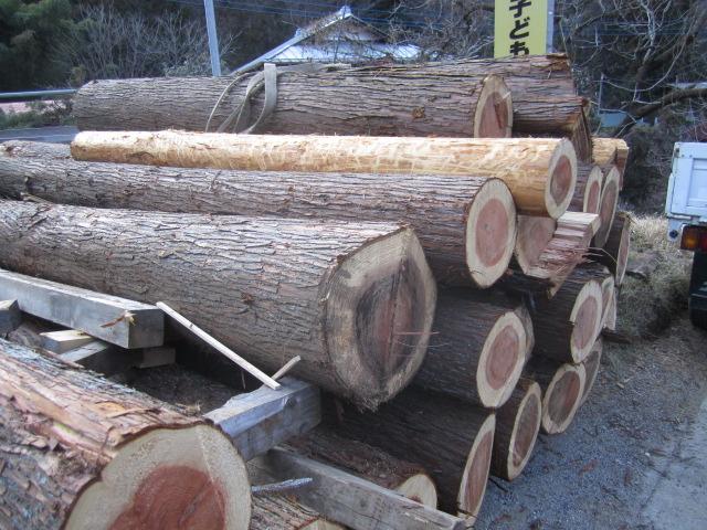 杉の皮剥ぎ_b0223199_2051261.jpg