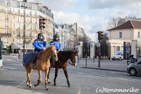 馬が歩く日常風景_c0024345_8352475.jpg