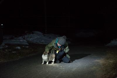 冬の猫 4:犬の声_a0180681_2131257.jpg