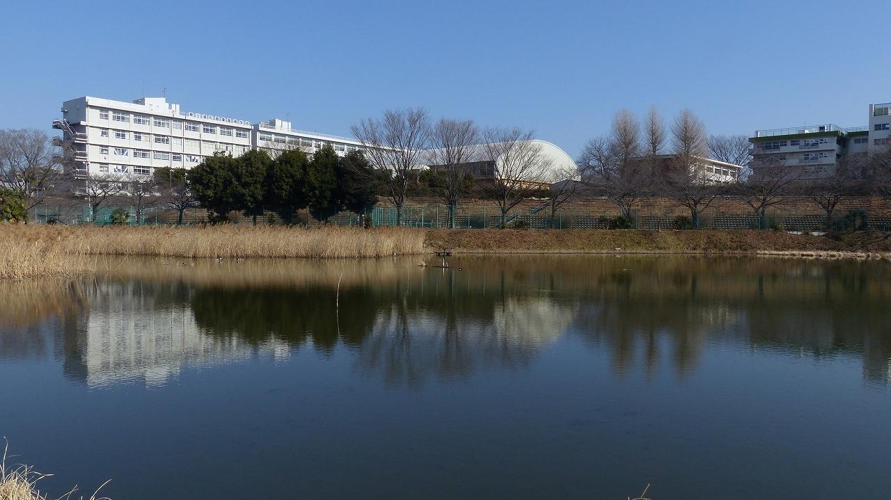 【 日記 2014 1/22 (水) 】 沼の怪鳥!_a0185081_162159.jpg