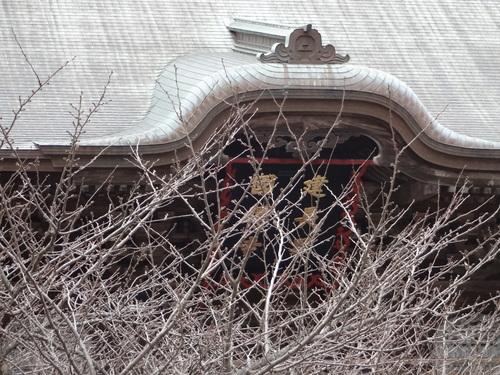 """振袖 """"時代菊""""   <秀粋の着物>_d0159384_043623.jpg"""