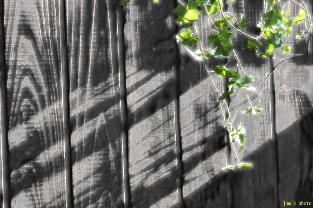 龍と春樹、ふたりの村上_a0158797_2319262.jpg