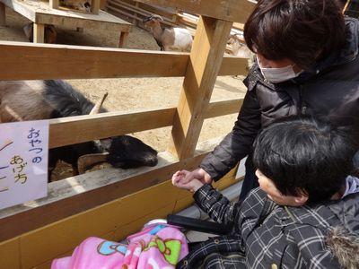 1/22 ☃ 大内山動物園 ☃_a0154110_11381163.jpg