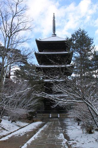 仁和寺 14雪景色5_e0048413_19105517.jpg