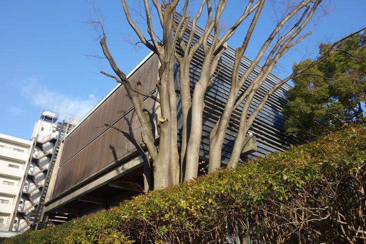 西荻窪をぶらぶら その5~杉並アニメーションミュージアム_a0287336_2226254.jpg
