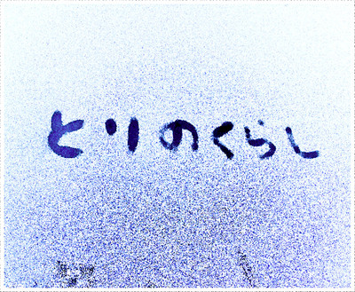 f0245967_952452.jpg