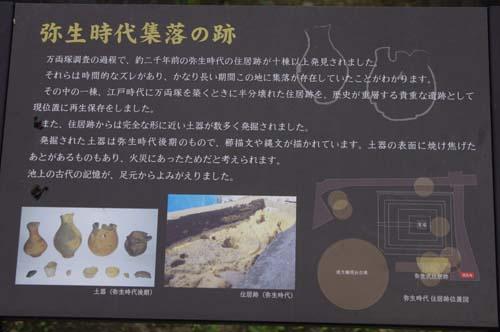 池上本門寺の見学会で見たこと_f0211178_18453959.jpg