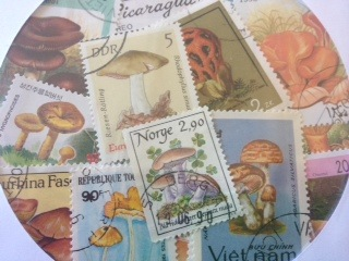 世界のきのこ切手 お知らせ_c0200314_1252859.jpg