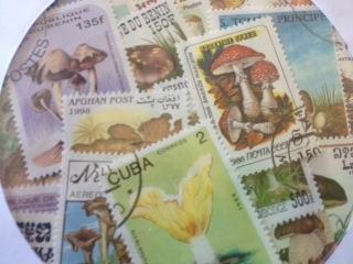 世界のきのこ切手 お知らせ_c0200314_1264721.jpg