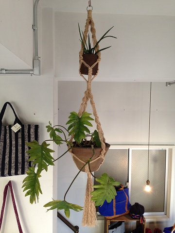 GREEN PEOPLE : PLANT HANGER_a0234452_18525159.jpg