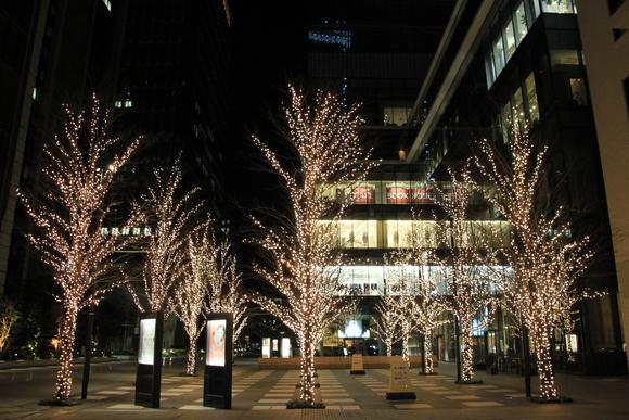 東京駅 イルミネーション_d0202264_5482346.jpg