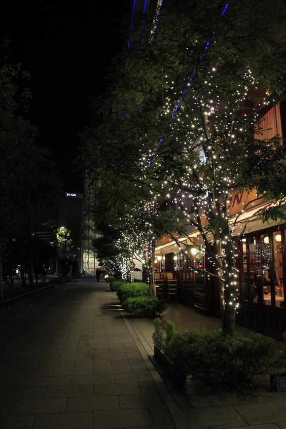 東京駅 イルミネーション_d0202264_5492058.jpg