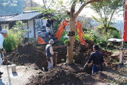 観音堂建立事業進捗状況_b0110585_157394.jpg