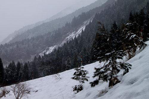 安曇川上流 坂下集落 14冬景色8_e0048413_17215824.jpg