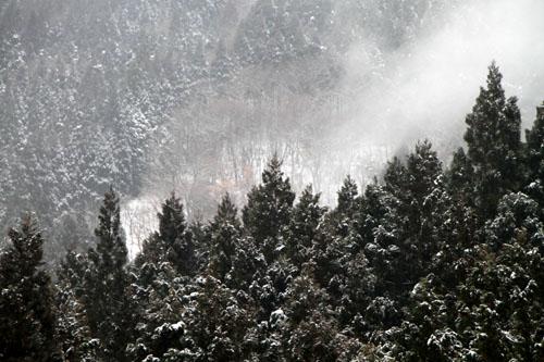 安曇川上流 坂下集落 14冬景色8_e0048413_17221475.jpg