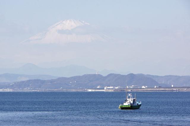 富士山が見えた日_a0257652_2395384.jpg