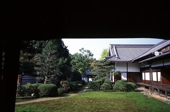 随心院 小野小町_a0045381_8475867.jpg