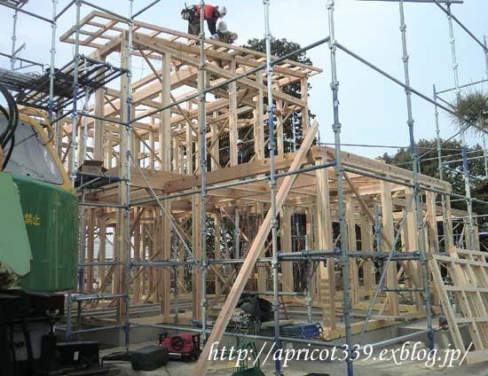 【家づくり】 建て方 上棟式_c0293787_22523529.jpg