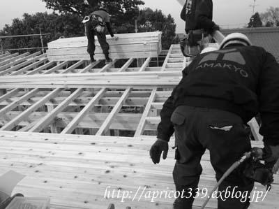【家づくり】 建て方 上棟式_c0293787_2303825.jpg