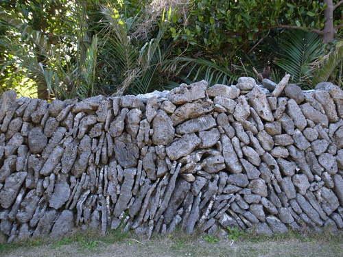 慶良間の石塀_d0147406_1025351.jpg