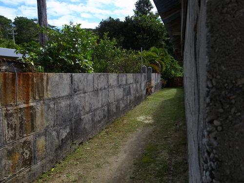 慶良間の石塀_d0147406_9532993.jpg