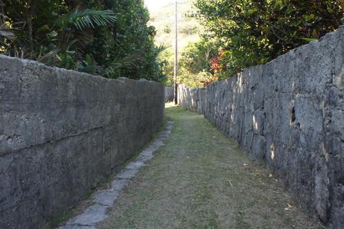 慶良間の石塀_d0147406_9582830.jpg