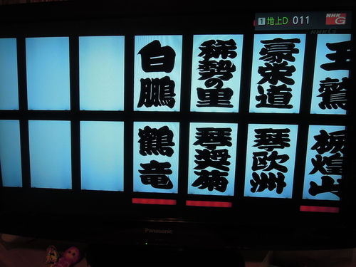 大相撲 初場所 千秋楽_e0116211_20443286.jpg