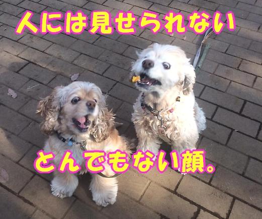 b0067012_1465641.jpg