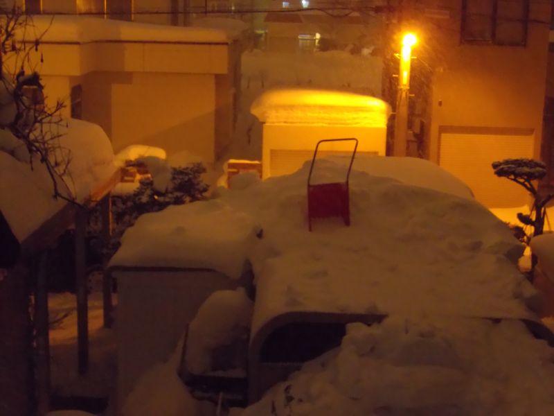 午後の吹雪_c0025115_21173132.jpg
