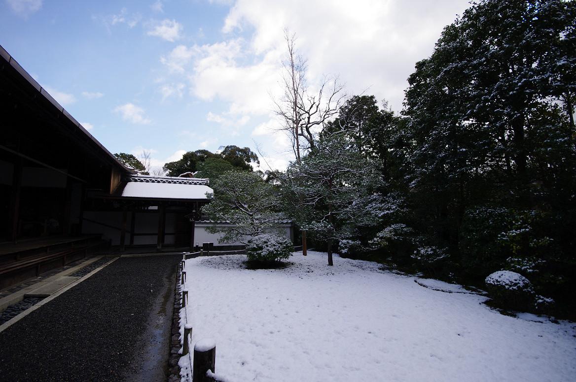 雪の退蔵院..._f0152550_19204233.jpg