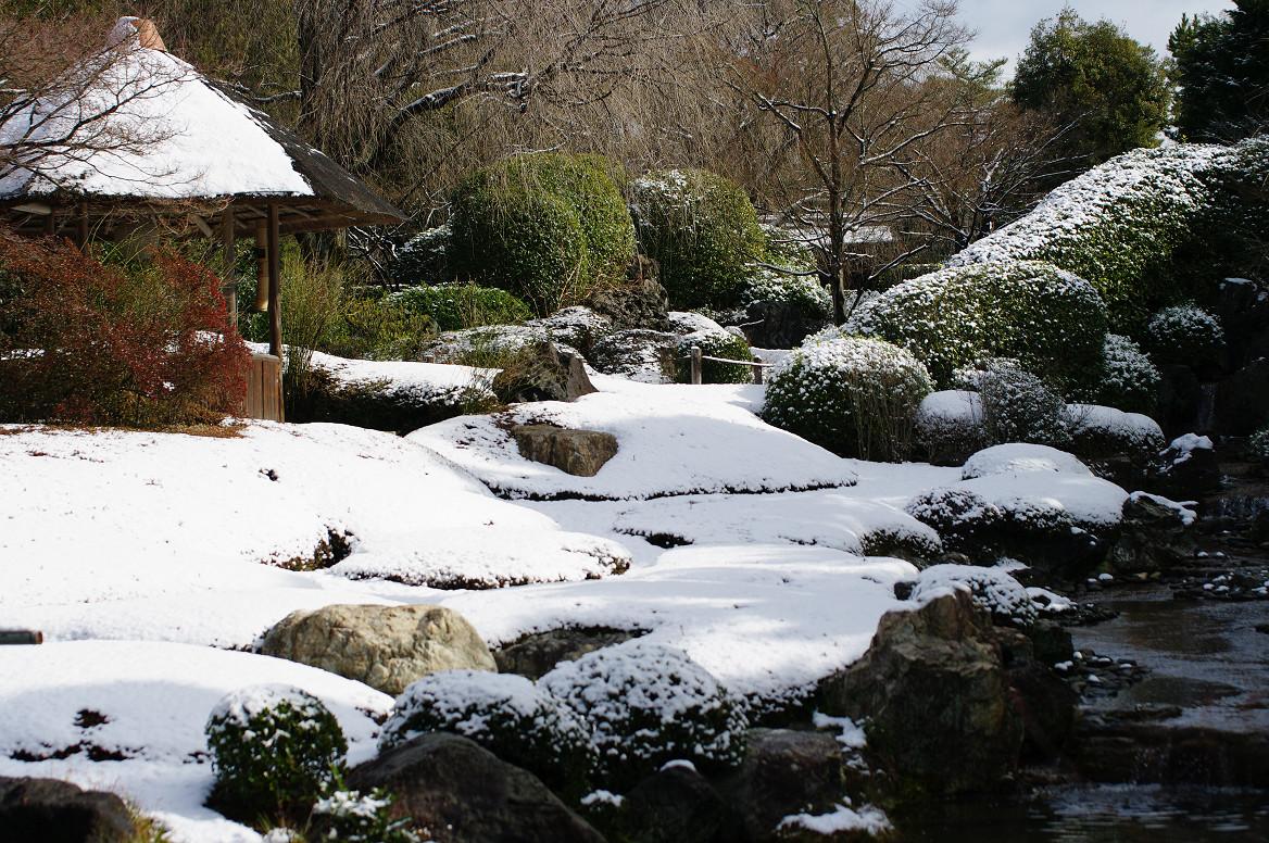 雪の退蔵院..._f0152550_19223730.jpg