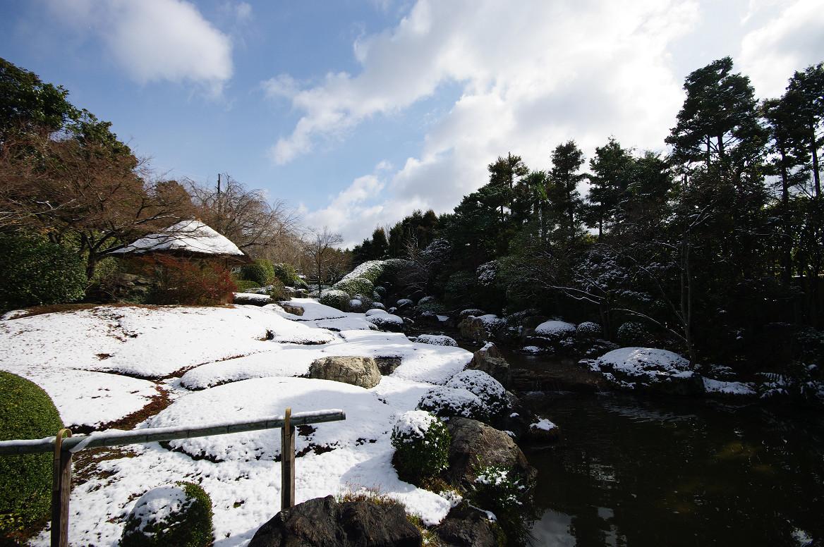 雪の退蔵院..._f0152550_19231329.jpg