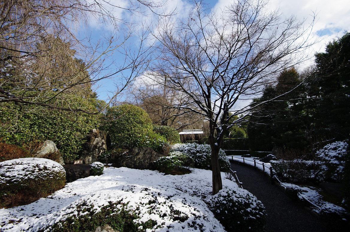 雪の退蔵院..._f0152550_19352359.jpg
